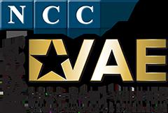 VAE 2020 Gold Winner